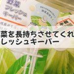 【鮮度キープ】野菜を長持ちさせてくれるフレッシュキーパー買って正解!