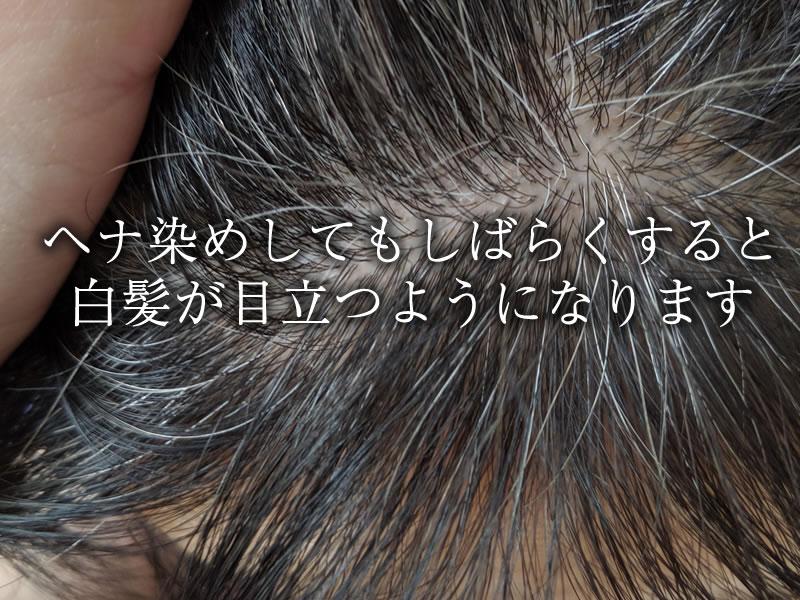ヘナ染めしてもしばらくすると白髪が目立つようになります